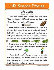 reading comprehension worksheet life cycles