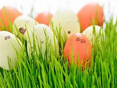 happy easter 2019 celebrate with easter events in myrtle beach plantation resort