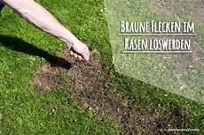 Braune Flecken Im Rasen So Werden Sie Die Braunen Stellen Los