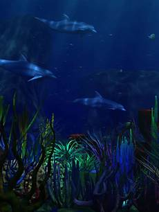 underwater black and white iphone wallpaper 3d abstract underwater world dolphin lagoon