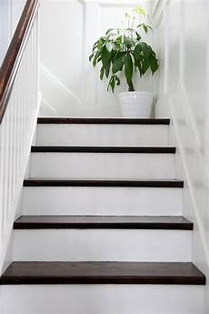 white stairs with a chocolate brown top exactly