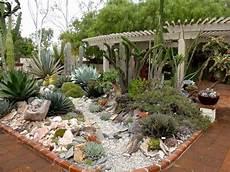 giardini piante grasse per esterno giardini con piante grasse piante grasse creare