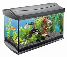 tetra aquarium aqua complete set 60l 61 5x34x43cm
