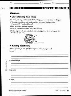 science bacteria worksheets 12135 worksheets bacteria and viruses worksheet worksheets viruses worksheet laurenpsyk free and