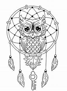 owls for owls coloring pages