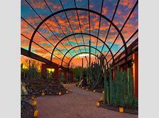 Best Restaurants In Scottsdale,Best Restaurants in Scottsdale | Kitchen West,Best restaurants in scottsdale 2020|2020-05-26