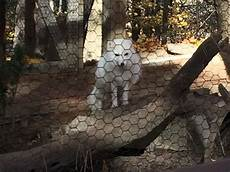 animal worksheets in 13905 ross park zoo binghamton all you need to before you go with photos tripadvisor