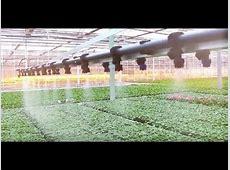 Irrispray Fixed I? Overhead irrigation system / beam