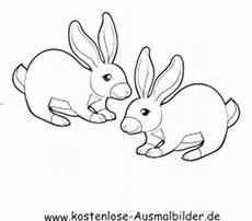 Ausmalbilder Tiere Hasen Osterhase Malvorlagen Gratis Spielen