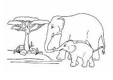 elefantenmama mit ihrem elefantenkind tiere zum ausmalen