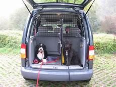 gro 223 er hund und kofferraum zu quot eng quot welche hundebox f 252 r