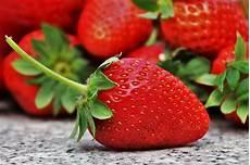 alimenti provocano coliche ai neonati a et 224 i bambini possono mangiare le fragole perch 233