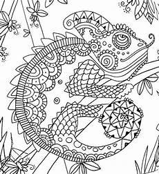 mandala coloring pages lizard 17931 909 best more coloring images on coloring pages coloring books and vintage coloring