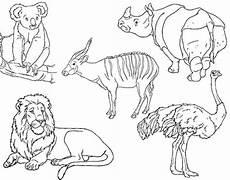 ausmalbilder wilde tiere zum ausdrucken in 2020