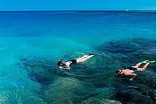 snorkeling dive provo