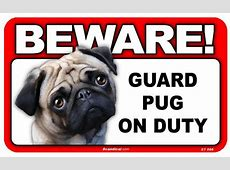 Top 25 funny dog signs   Dogtime
