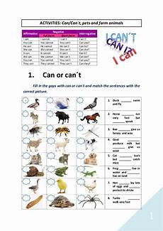 can animals do worksheets 13837 word activities