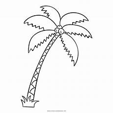 palma llanera para dibujar palma disegni da colorare ultra coloring pages