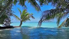ocean waves on tropical island maldives ambience sound