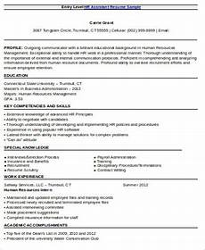entry level resume objective 8 exles in word pdf