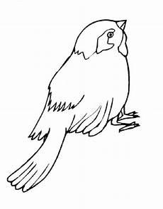 Malvorlage Vogel Spatz Ausmalbilder Spatz Malvorlagen Ausdrucken 1