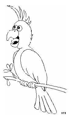 Malvorlage Vogel Auf Ast Sprechender Vogel Auf Ast Ausmalbild Malvorlage Tiere