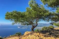 Was Bedeutet Mediterran - was bedeutet mediterran was ist mediterane k 252 che