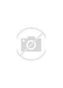 как проверить полис осаго в базе данных по фамилии бесплатно