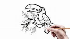 6000 Gambar Burung Yang Mudah Gambar Id