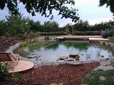 Schwimmteich Selber Anlegen - schwimmteich bild schwimmteich gestalten
