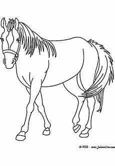 Pferde Malvorlagen Zum Malen Ausmalbilder Pferd Mit Prinzessin Ausmalbilder Pferde