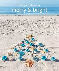 17 best merry tropical christmas images pinterest coastal christmas tropical christmas and