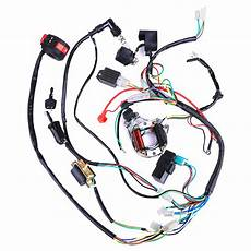 Complete Electric Wiring Harness Wire Loom Atv Mini