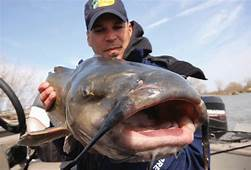 Tips For Tackling Catfish • Outdoor Canada