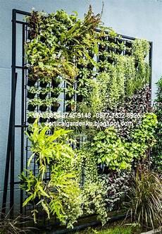 Desain Rak Sayuran Desain Terbaru Rumah Modern Minimalis