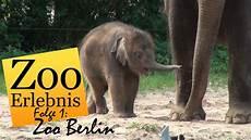 am zoo zoo berlin zoo erlebnis 1
