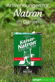 pflanzen für vorgarten 6 clevere anwendungen f 252 r natron im garten garten garten pflanzen und unkraut im garten