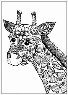 giraffe with flowers giraffes coloring pages