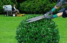 garden cleaning services in india