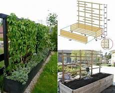 Blumenkübel Winterfest Machen - mobiler sichtschutz pflanzen spalier selber bauen garten