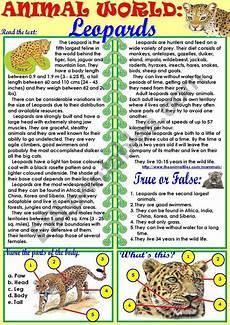 animal world worksheets 14372 animal world leopards esl worksheet by tmk939