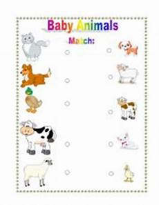 baby animals names worksheet baby animals worksheets