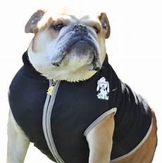 bulldog clothes for dogs redd compare price to bulldogs clothes dreamboracay