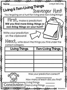 science worksheets living and nonliving things 12103 living and non living things real pictures for sorting activities 1st grade science