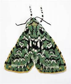 merveille du jour merveille du jour moth max s world