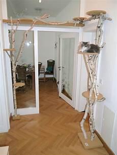 catwalk selber bauen wir bauen ihren kratzbaum katzenkratzbaum kratzbaum und kratzbaum katze