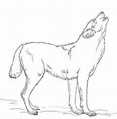 ausmalbild heulender wolf ausmalbilder kostenlos zum