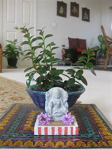 Indian Home Decor Ideas In Usa by Pin By Vasudha Prashanth On Indian Decor