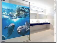glasbilder für badezimmer geeignet passgenaues glasbild mit delphinen f 252 rs badezimmer