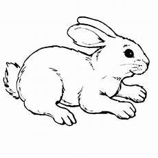 malvorlagen minecraft bunny rabbit en 2020
